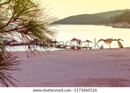 Beach umbrella on the beach #1173060526