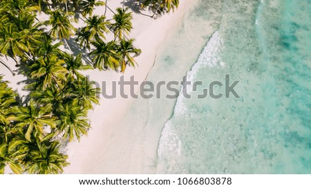 Beach with beautiful coastline. Palm trees and caribbean sea. Color water is turquoise, white sand and green palm trees. East National Park isla Saona, Dominican Republic