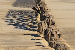 Beach with row of beach poles North Sea, Cadzand-Bad, Netherlands.
