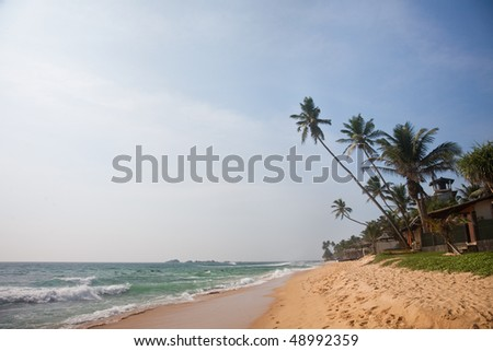 beach with sand, palms and ocean