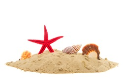 Beach with sand starfish and shells isolated over white