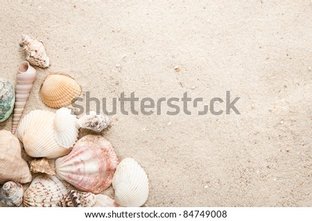 Beach with seashell and sand