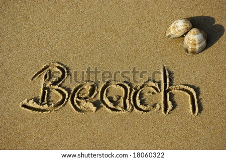 Beach written in the sand next to a shell