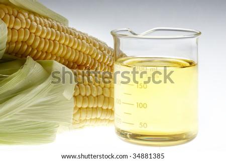 Beaker of of ethanol and ears of corn shot on lightbox