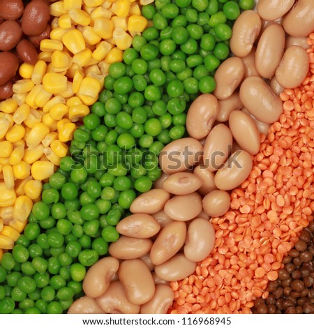 Beans, lentils, peas and corn in a diagonal row - stock photo