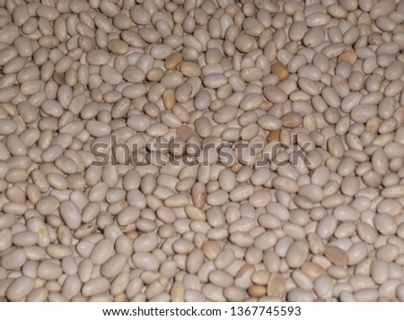 beans, navy bean, pea bean, white bean