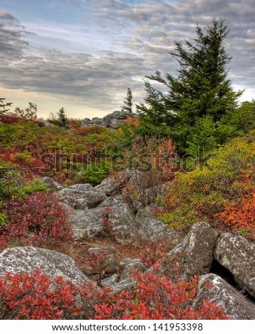 Bear Rocks West Virginia Sunrise  - stock photo
