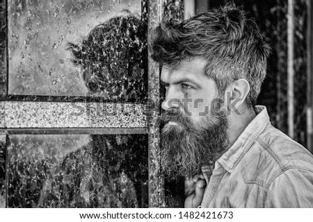Beard grooming. Beard care. Masculinity and manliness. Man attractive bearded hipster posing outdoors. Confident posture of handsome man. Guy masculine appearance with long beard. Barber concept.