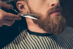 Beard styling and cut. Close up cropped photo of a styling of a red beard. So trendy and stylish! Advertising and barber shop concept