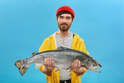 Bearded fisherman in yellow anorak and red hat holding huge fish in hands, demonstrating his successful catch. Horizontal portrait of skilled workman posing with big salmon on blue background