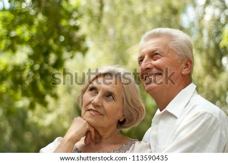 Beauteous elderly couple went for a walk in the park on a summer day