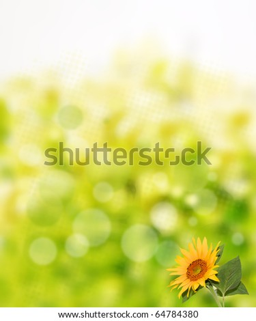 beautiful abstract background with sunflower