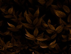 Beautiful abstract color brown and yellow flowers on dark background and orange flower frame and brown leaves texture, brown background, orange and gold love banner, orange isolated background