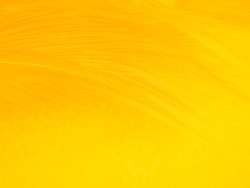 Beautiful abstract orange feathers on yellow background, soft brown feather texture on white pattern background, yellow feather background, love theme, valentines day