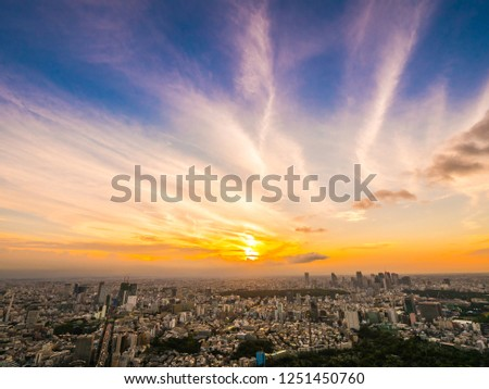 Beautiful Aerial view of architecture and building around tokyo city at sunset time in japan #1251450760