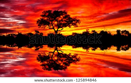 Beautiful African sunset reflected in water, in the Kruger National Park, South Africa