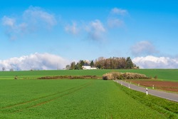 Beautiful  agriculture field with road on the side and a house in forest in the front