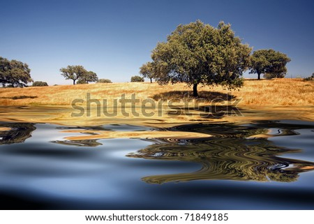 beautiful alentejo landscape with trees and ferrous water