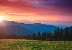 Beautiful alpine highlands in morning light. Location place Carpathian mountains, Ukraine, Europe. Summer holiday season. Adventure vacation. Majestic and gorgeous day. Discover the beauty of earth.