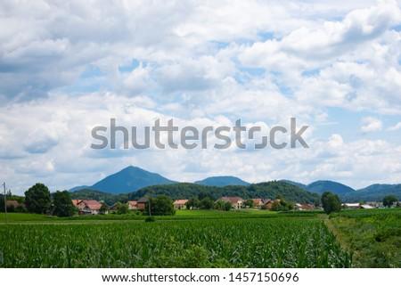 Beautiful Alpine landscape. Alpine mountains in summer time. #1457150696