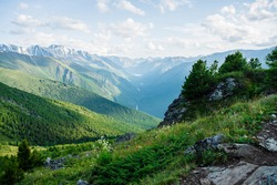 Beautiful alpine landscape with small conifer trees on rock on background of giant mountains and green forest valley with alpine lake and river. Awesome view to vast expanses. Vivid highland  scenery.