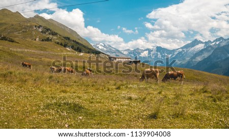 Beautiful alpine view at Mayrhofen - Zillertal - Tyrol - Austria #1139904008