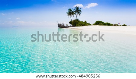 Beautiful amazing nature background. Tropical blue sun sea. Luxury holiday resort. Island atoll about coral reef. Fresh  freedom. Adventure day. Snorkeling. Coconut paradise.