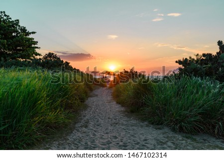 Beautiful and colorful sunset with golden light and sunbeams in a grass and sand path at Itaipu beach during summer in Niteroi, Rio de Janeiro, Brazil. - Image #1467102314