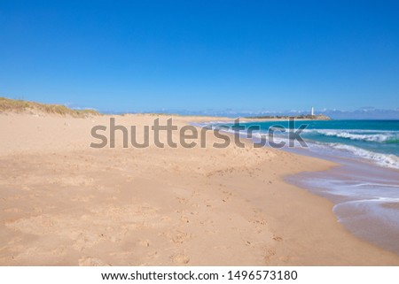 beautiful and idyllic landscape of wild natural beaches of Zahora and Cala Isabel, near Canos Meca village (Barbate, Cadiz, Andalusia, Spain) and Cape Trafalgar with lighthouse #1496573180