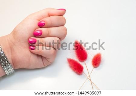 Beautiful and luxury dark pink gel nail art on fahionista woman almond manicure acrylic extension fingernail.