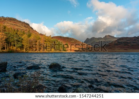 Beautiful and moody morning fall light at Blea Tarn in the English Lake District with views of the Langdale Pikes, and Side Pike during autumn. #1547244251