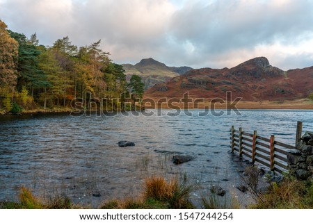 Beautiful and moody morning fall light at Blea Tarn in the English Lake District with views of the Langdale Pikes, and Side Pike during autumn. #1547244254