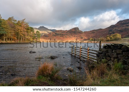 Beautiful and moody morning fall light at Blea Tarn in the English Lake District with views of the Langdale Pikes, and Side Pike during autumn. #1547244260
