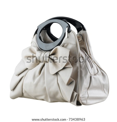 Beautiful and nice design of the lady accessory handbag isolated on white