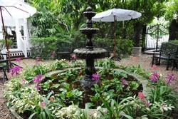 Beautiful Antique Fountain in a Tranquil Formal Garden