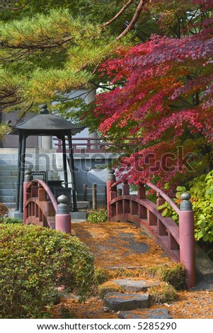 Beautiful apsect from a Japanese garden with a traditional bridge.Location: Rinoji Temple garden,Sendai,Japan.