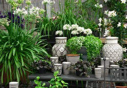 Beautiful arrangement of plants and black and white ceramics in a flower shop.