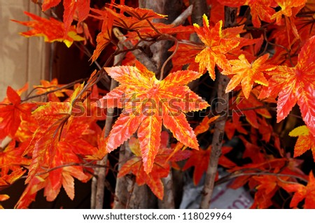 Beautiful Artificial Leaf - stock photo