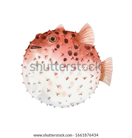 Beautiful artwork with very cute watercolor hedgehog fish. Stock illustration. Sea life. stock photo