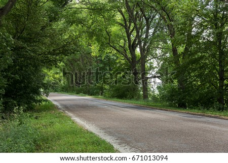 Beautiful asphalt road through tunnel from bent trees.  small road in tunnel from green trees. Mystical picture of landscape of road leaving  from green trees
