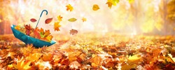 Beautiful autumn background landscape. Carpet of fallen orange autumn leaves in park and blue umbrella. Leaves fly in wind in sunlight. Concept of Golden autumn.