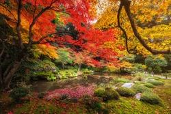 Beautiful autumn colorful leaf garden with pond at Nanzen-ji Temple, Kyoto, Japan. Famous travel landmark during fall season, Kansai.