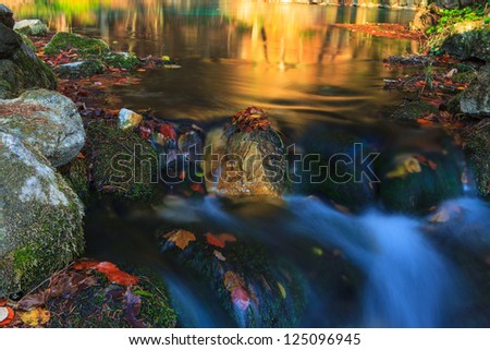 Beautiful autumn foliage and reflection patterns in mountain stream in the forest
