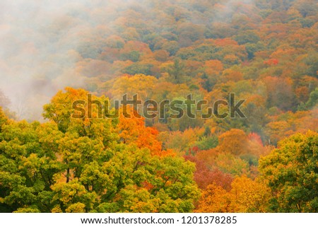 Beautiful Autumn Foliage with fog at Woodstock, Vermont, USA #1201378285