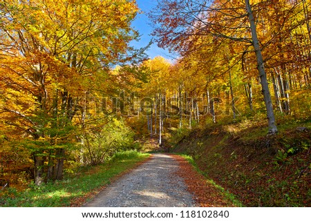 beautiful autumn landscape in the mountains
