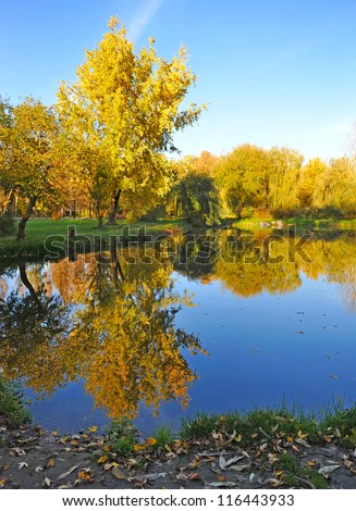 Beautiful autumn landscape with a lake