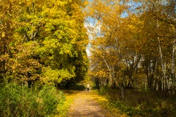 Beautiful Autumn Landscape With Walking Man On Walkway In Sunny Day In Park.
