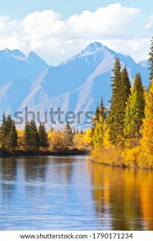 Beautiful autumn landscape with yellowed trees at the riverside and a mountain range on sunny afternoon. Siberia, Baikal region, Eastern Sayan Mountains,  Buryatia, Tunka foothill valley, Irkut Rive Photo stock ©