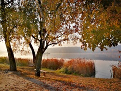 Beautiful autumn. Morning fog.  Park bench with lake view