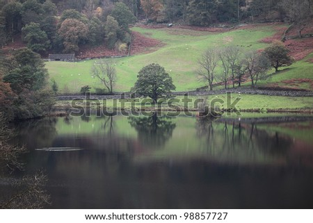 Beautiful Autumn reflections. The Lake District, Cumbria, England